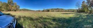 2445 County Road 5530, Salem, MO 65560 (#21076472) :: Delhougne Realty Group