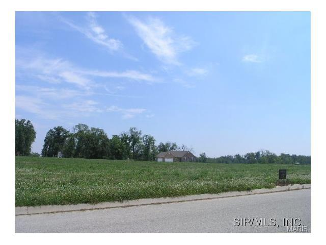5119 Donington, Columbia, IL 62236 (#2913172) :: St. Louis Finest Homes Realty Group