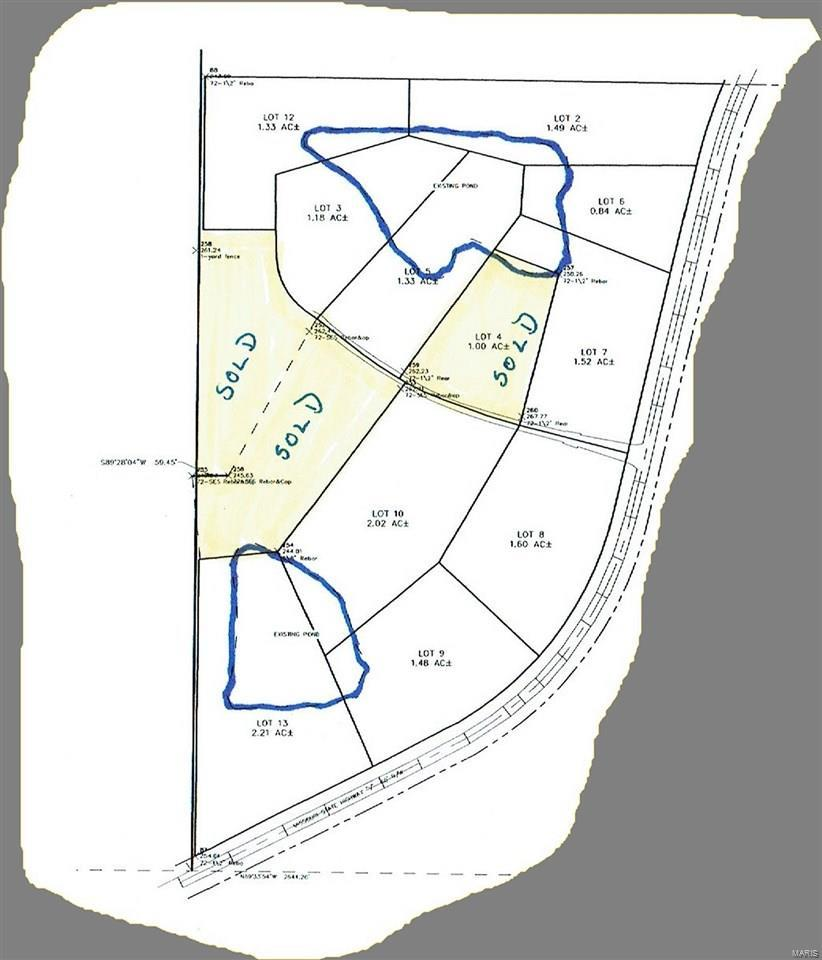 0 Lot 8 Bridgestone Lake Estates - Photo 1