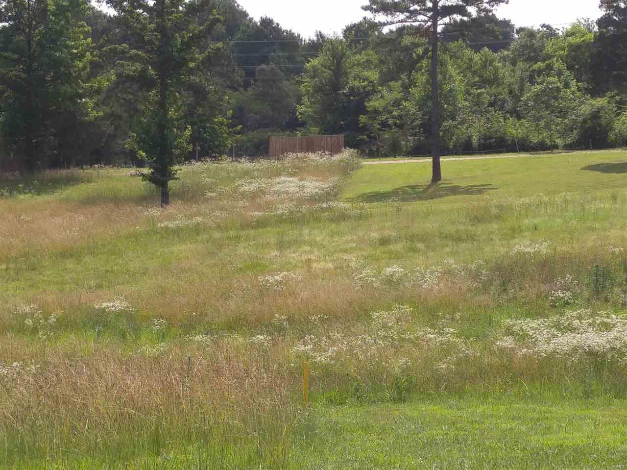 0 Lot 2 Shadow Rock Lake Estates - Photo 1