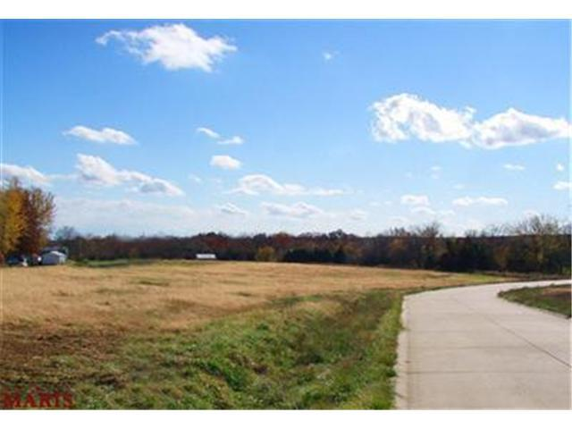 0 Lot #14 Barton Creek, Wentzville, MO 63385 (#10044319) :: The Becky O'Neill Power Home Selling Team