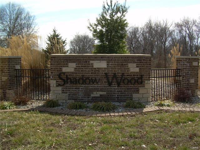 8913 Wheat Drive, Troy, IL 62294 (#16012717) :: PalmerHouse Properties LLC