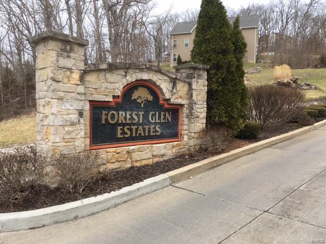 2847 Forest Glen, Pacific, MO 63069 (#16013428) :: PalmerHouse Properties LLC