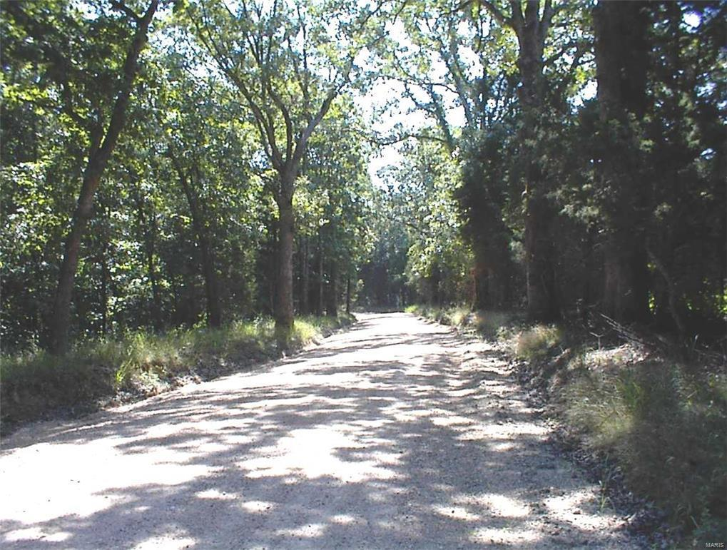 3971 Blocks Branch Road - Photo 1