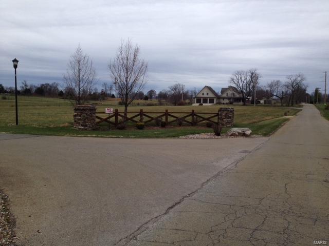 1 Stone Creek, Farmington, MO 63640 (#16043447) :: Sue Martin Team