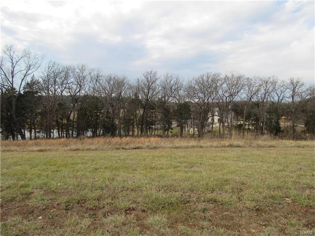 104 Lot Of Walnut Ridge Place, Washington, MO 63090 (#17003358) :: Realty Executives, Fort Leonard Wood LLC