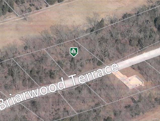 153 Briarwood Terr, De Soto, MO 63020 (#17005435) :: Sue Martin Team