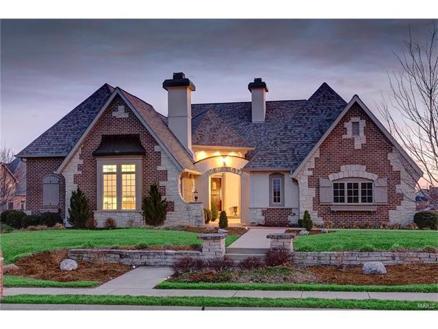 163 Berringer Drive, O'Fallon, IL 62269 (#17007853) :: Fusion Realty, LLC