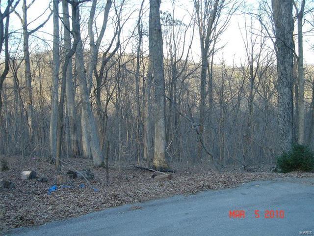 1201 Hickory Run Lane, Wildwood, MO 63005 (#17015988) :: Sue Martin Team