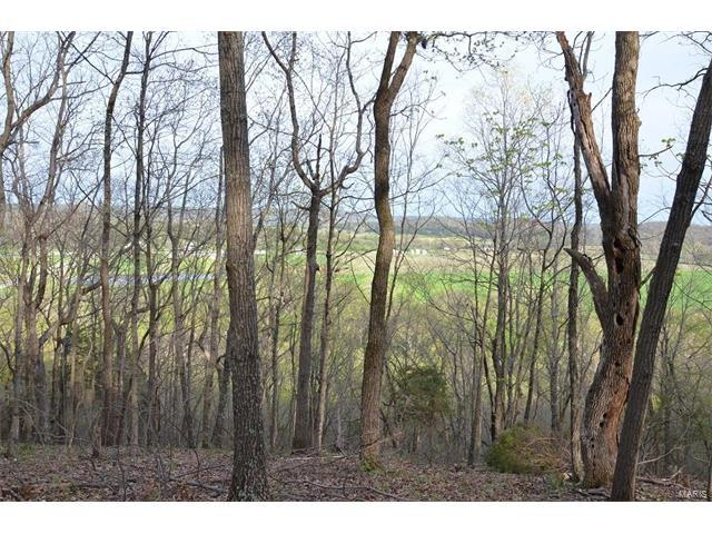 12 Grandview Trail, Eureka, MO 63025 (#17027366) :: Clarity Street Realty