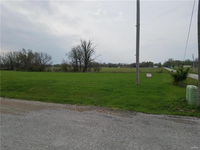 1 White Road, Montgomery City, MO 63361 (#17028395) :: Sue Martin Team