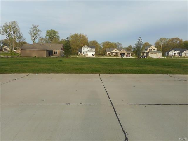 1406 Crimson King Way Drive, Troy, IL 62294 (#17029260) :: PalmerHouse Properties LLC