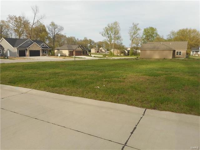8807 Wheat Drive, Troy, IL 62294 (#17029270) :: PalmerHouse Properties LLC