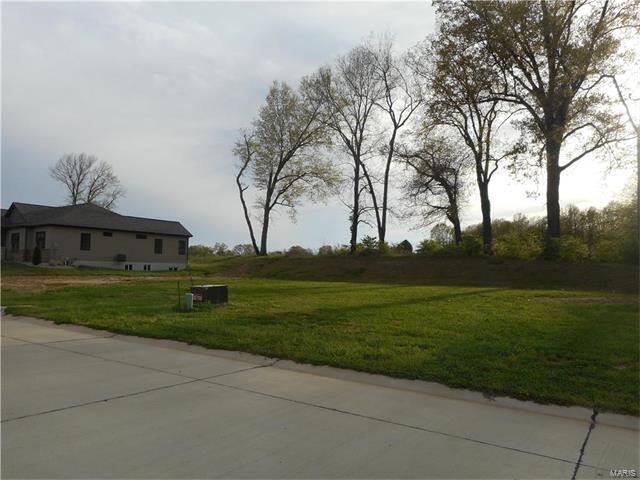 1407 Crimson King Way, Troy, IL 62294 (#17031059) :: PalmerHouse Properties LLC