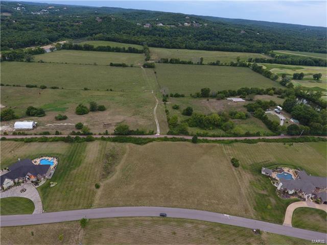 419 Crescent Vista Lane, Eureka, MO 63025 (#17064749) :: The Becky O'Neill Power Home Selling Team