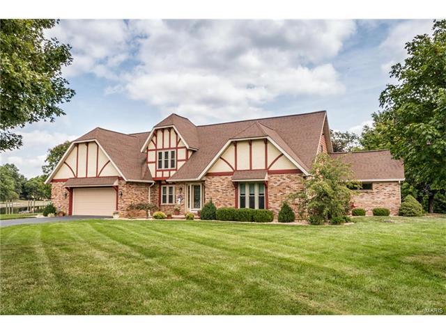 4036 Chestnut Oak, Smithton, IL 62285 (#17065130) :: Clarity Street Realty
