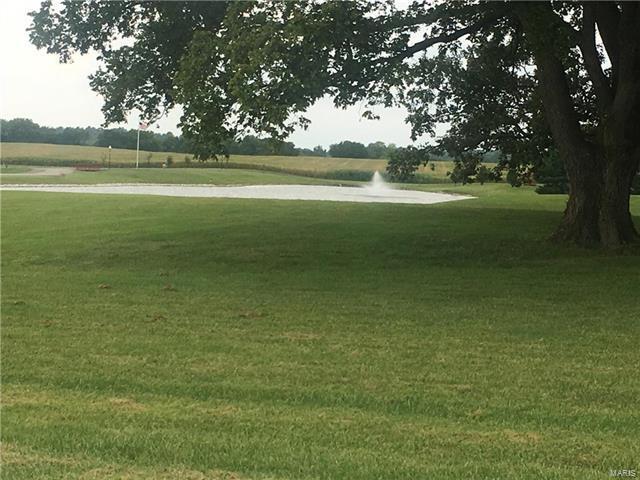 863 Wildflower Lane, Greenville, IL 62246 (#17069507) :: Sue Martin Team