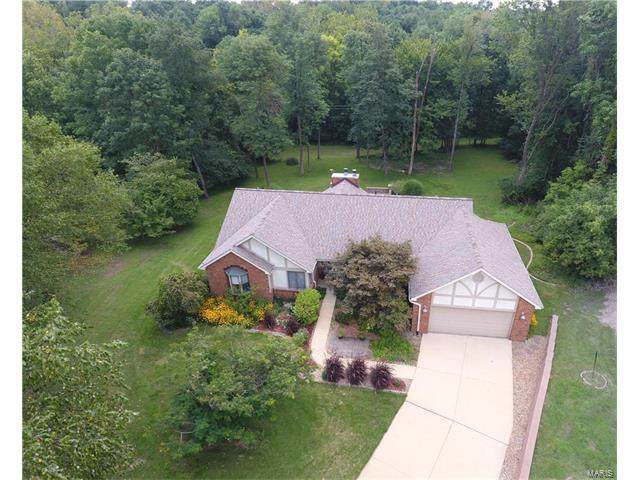 15 Ginger Ridge Lane, Glen Carbon, IL 62034 (#17070141) :: Fusion Realty, LLC