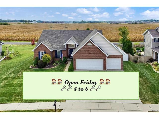 6 Oakshire Drive, Glen Carbon, IL 62034 (#17074810) :: Fusion Realty, LLC