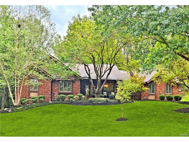 12542 Hibler Woods Drive, Creve Coeur, MO 63141 (#17081095) :: RE/MAX Vision