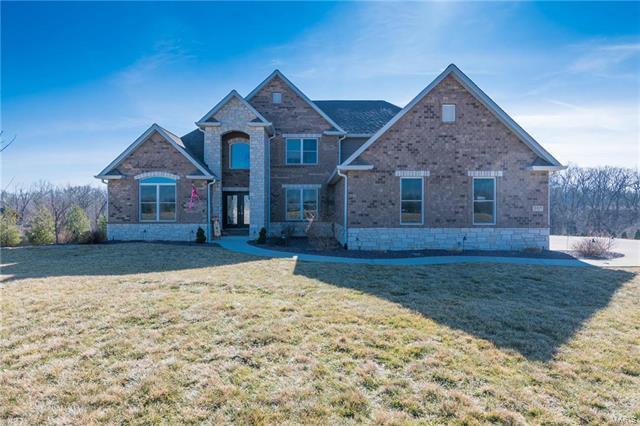 8420 Rock Ridge Court, Edwardsville, IL 62025 (#17081562) :: Sue Martin Team