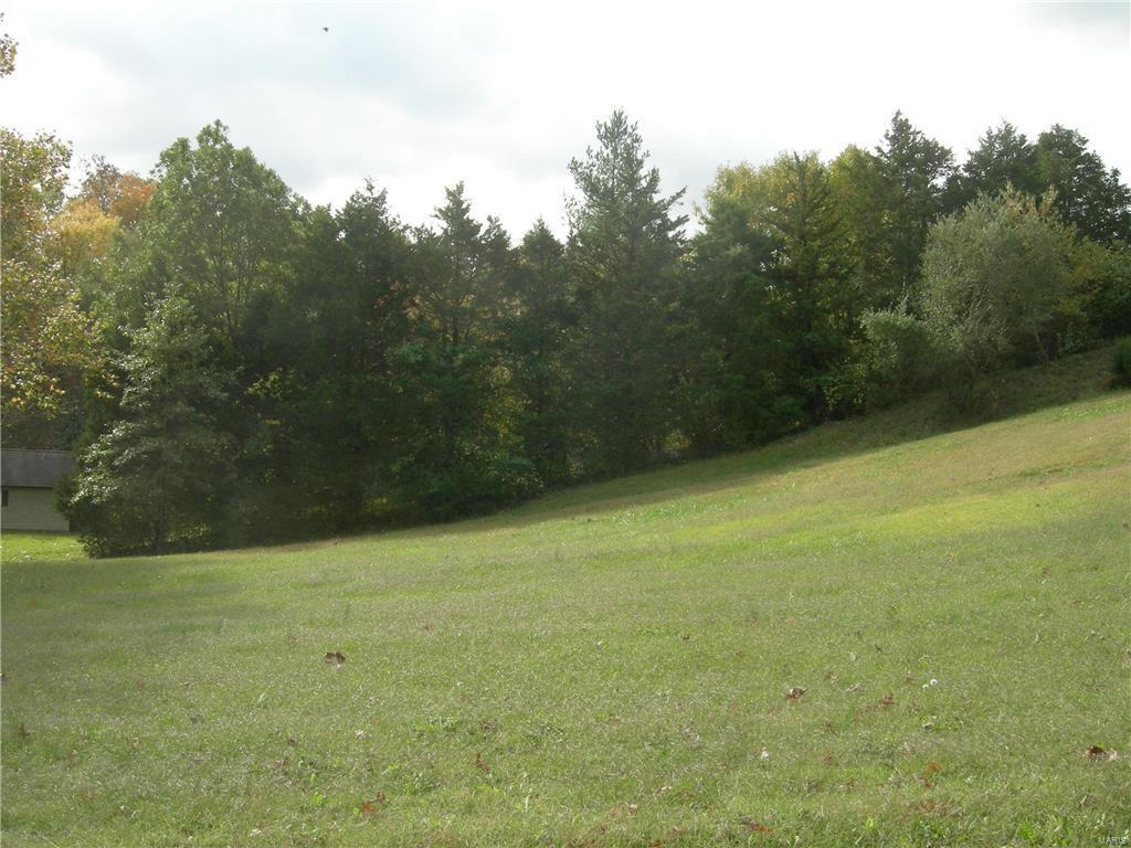 0 Woods Drive - Photo 1