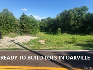 3702 Yaeger Road, Oakville, MO 63129 (#18044730) :: PalmerHouse Properties LLC