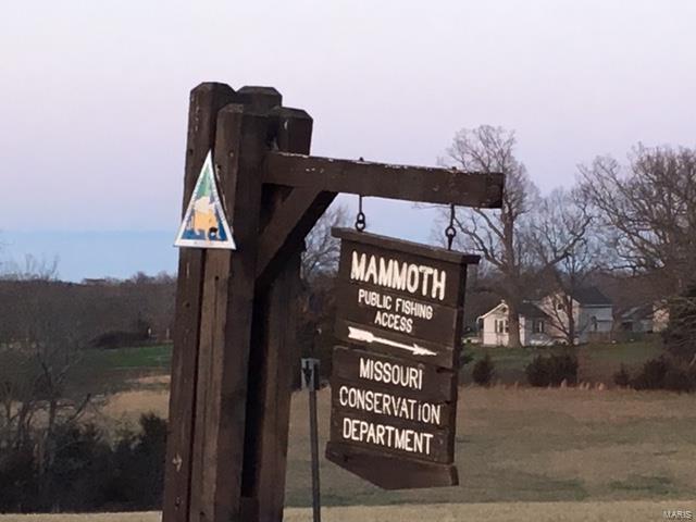 13677 Mammoth Road, De Soto, MO 63020 (#18045107) :: Peter Lu Team