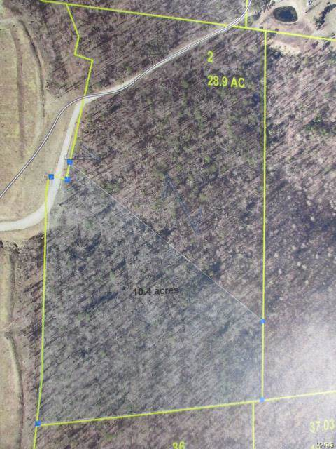 2 Hwy 67 Souith, Fredericktown, MO 63645 (#19002548) :: Holden Realty Group - RE/MAX Preferred