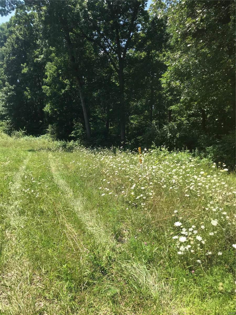 0 Woodline Drive - Photo 1