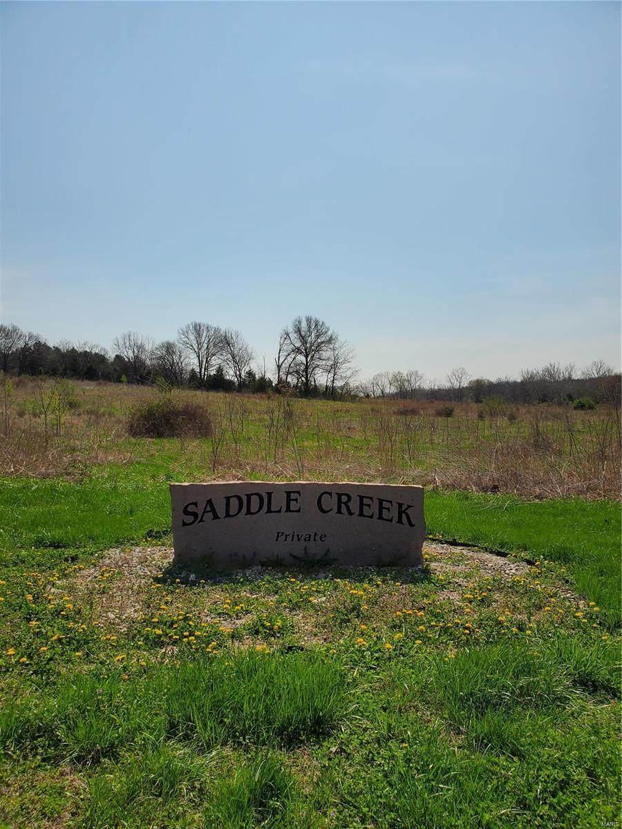 0 Saddle Creek Road - Photo 1
