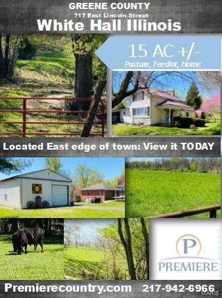 717 East Lincoln St., WHITE HALL, IL 62092 (#20030838) :: Fusion Realty, LLC