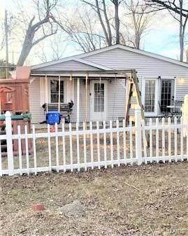 11 Minnie Drive, Belleville, IL 62226 (#21010837) :: Jeremy Schneider Real Estate