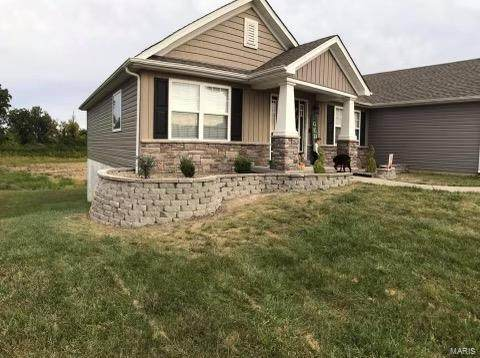 151 Hidden Mill Ct, Moscow Mills, MO 63362 (#21076093) :: Mid Rivers Homes