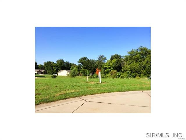 Cliff View Place, Valmeyer, IL 62295 (#4312099) :: St. Louis Finest Homes Realty Group