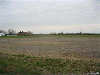 8710 Saint Leos Road, RUMA, IL 62278 (#16046255) :: PalmerHouse Properties LLC