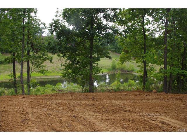 90 Birch Lake Drive, Troy, MO 63379 (#16052059) :: Sue Martin Team