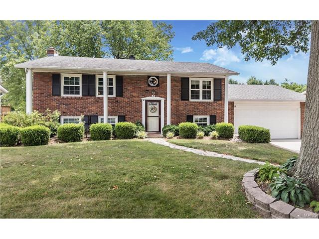 14 May Valley Lane, Fenton, MO 63026 (#17056424) :: Gerard Realty Group