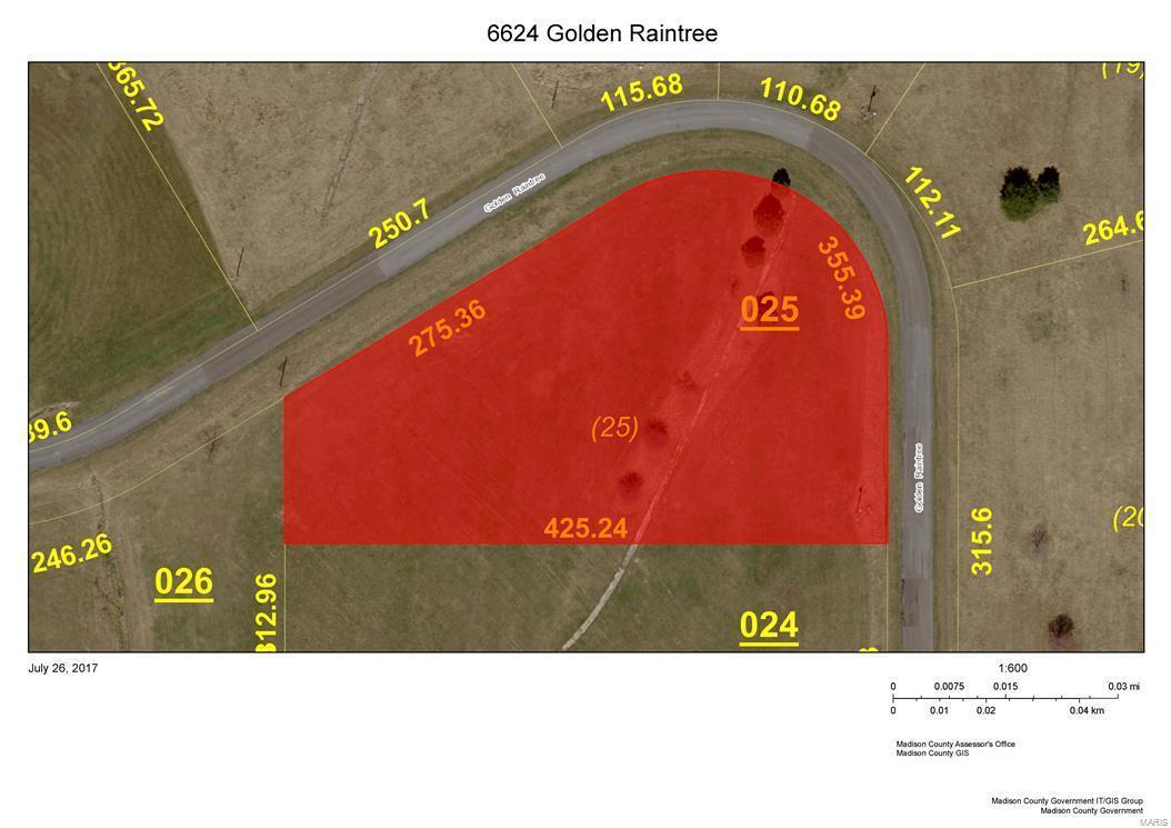 6624 Golden Raintree - Photo 1