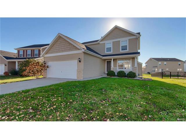 6932 Arbor Cove Drive, Fairview Heights, IL 62208 (#17091670) :: Clarity Street Realty