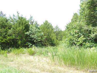 6107 Sunset Ridge Road, Hillsboro, MO 63050 (#19002403) :: Sue Martin Team
