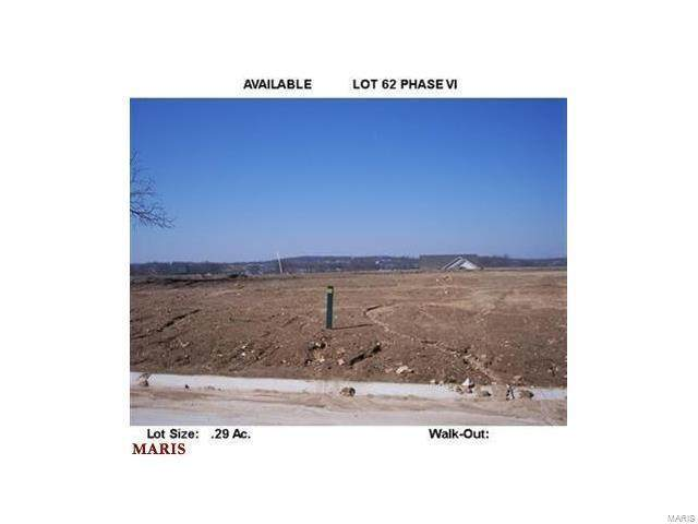 142 Vista Vallarta-Lot 62 Drive - Photo 1