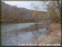 17 Lot 17 Field & Stream Phase 4, Dixon, MO 65459 (#21011051) :: Clarity Street Realty