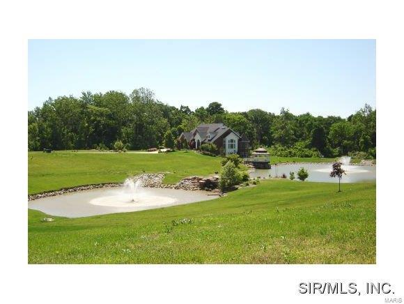 Fountains Of Sunset, Glen Carbon, IL 62034 (#2818589) :: Century 21 Advantage