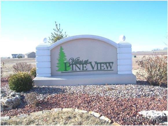 2604 Pine View Drive, Highland, IL 62249 (#2902275) :: Peter Lu Team