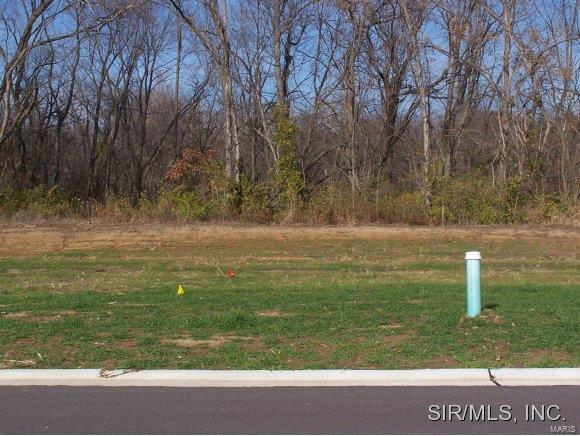 679 Galen Drive, TRENTON, IL 62293 (#4003899) :: RE/MAX Vision