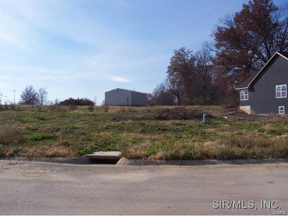 437 Galen Drive, TRENTON, IL 62293 (#4003901) :: RE/MAX Vision