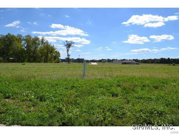 5534 Willow Crossing Street, Smithton, IL 62285 (#4104173) :: Realty Executives, Fort Leonard Wood LLC