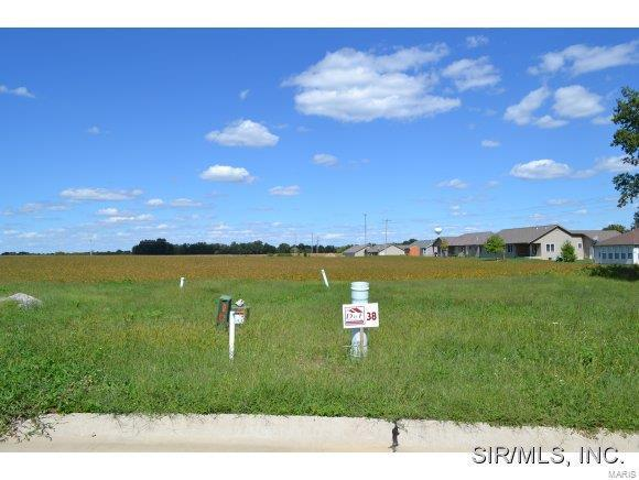 5547 Willow Crossing Street, Smithton, IL 62285 (#4104218) :: Sue Martin Team