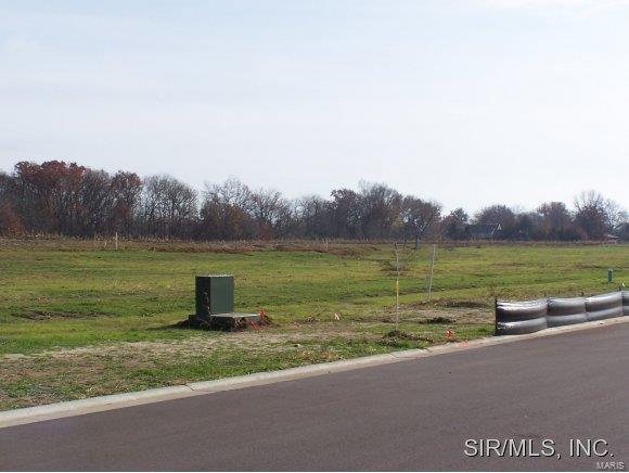 508 Wedgewood Lane, TRENTON, IL 62293 (#4114412) :: RE/MAX Professional Realty